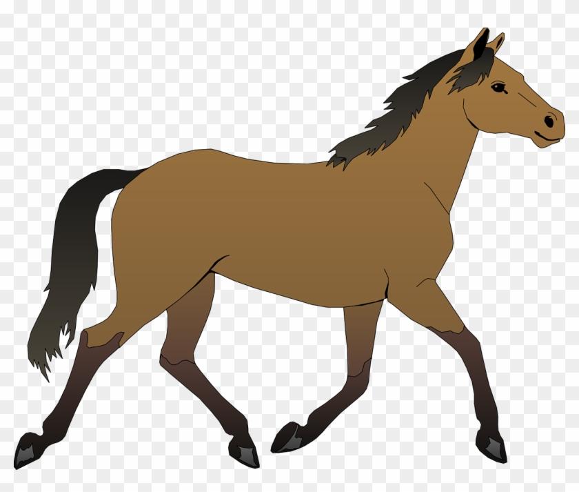 Horse Free Vector - Horse Clipart #33365