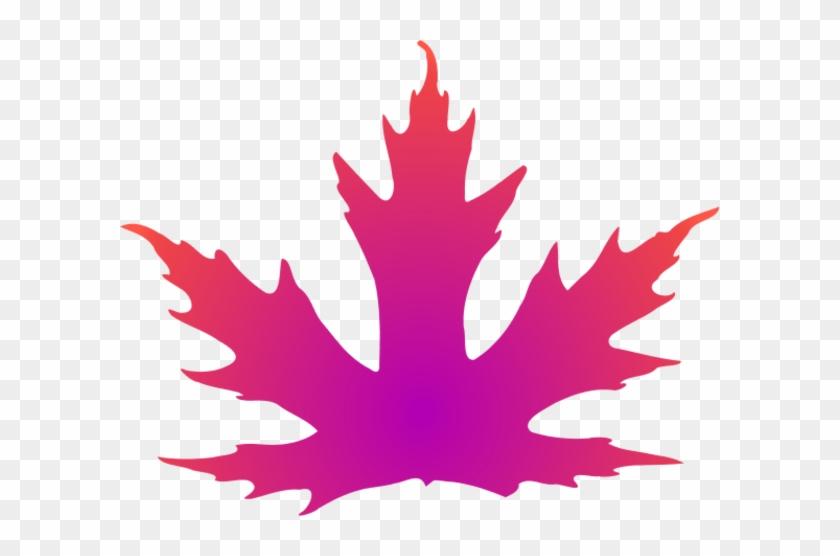 Leaf Clipart Pink Leaves - Pink Maple Leaf Clip Art #33411