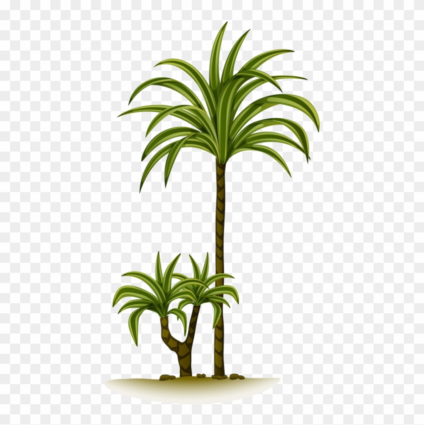 Arbre,tubes,png - Palm Trees #33423
