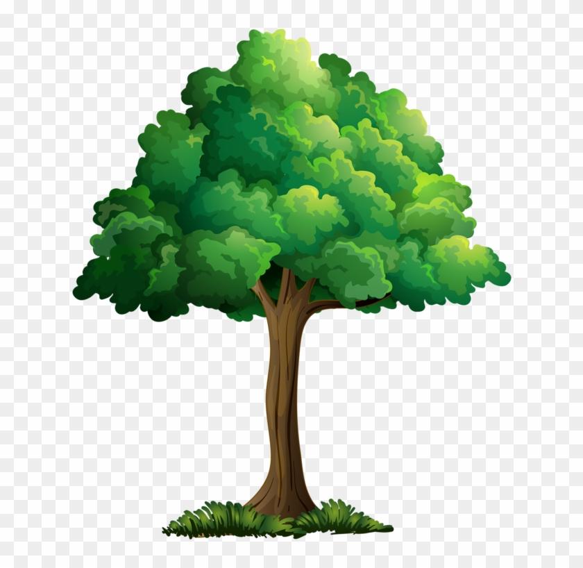 Tree Leavescartoon Pictureclip Art - Clip Art Summer Tree #33461