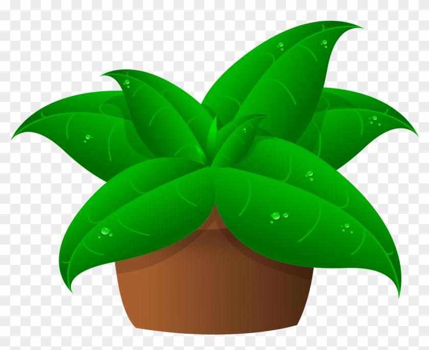 Clipart Of Plants In Pot - Plants Clipart #33496