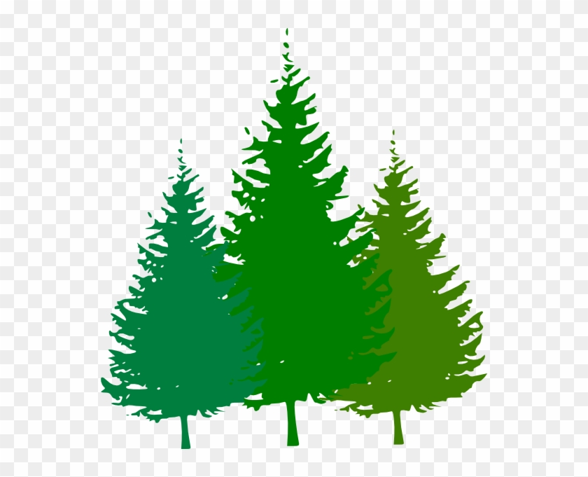 Forest Clip Art Free Pine Tree Silhouette Vector Free Transparent Png Clipart Images Download