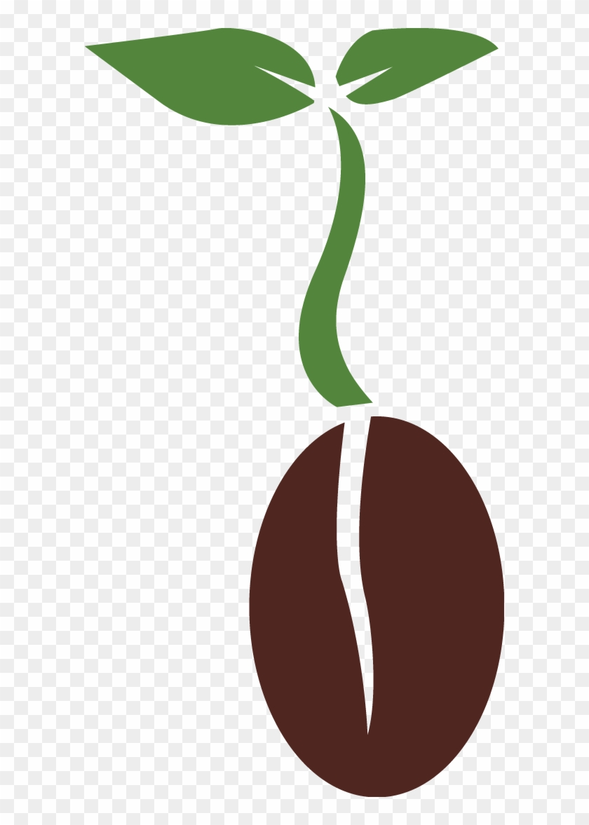 Seed Png Transparent Images - Plant Seed Png #33651