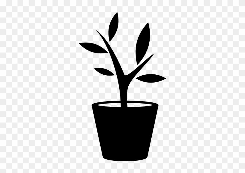 Size - Plant Pot Icon #33746