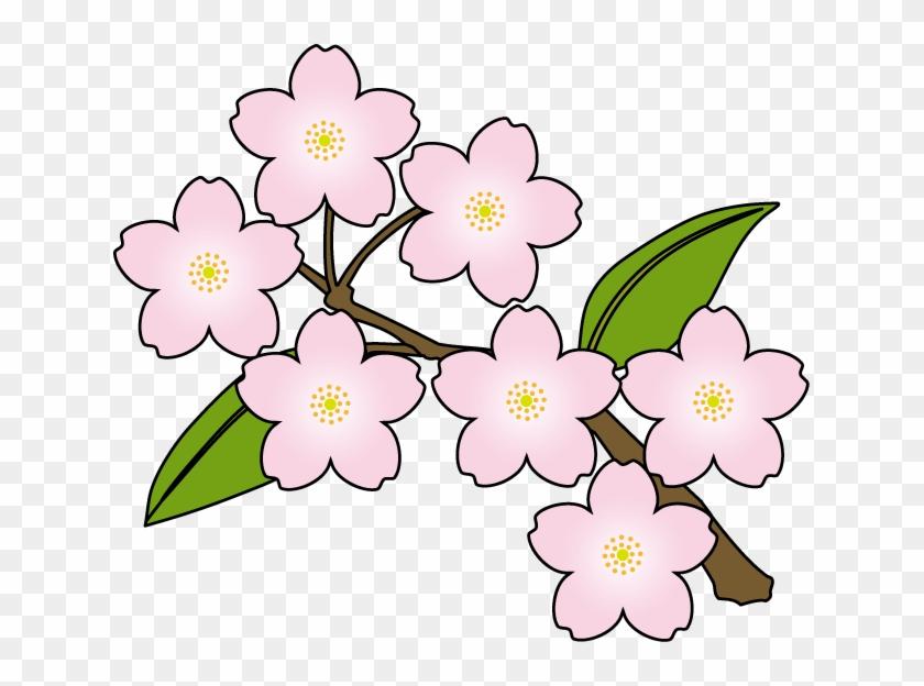 Japanese Flowers Clipart - Spring Sakura Clip Art #33777