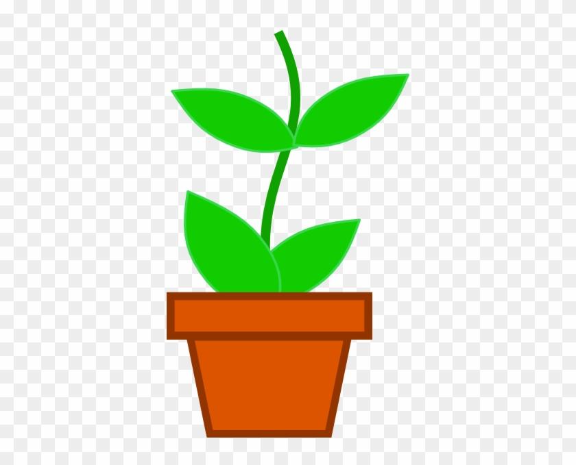 Plant In Pot Clip Art #33816