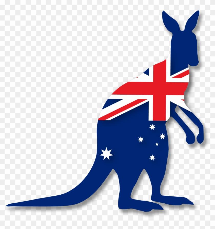 Kangaroo Australia Png Clipart - Kangaroo .png #33825
