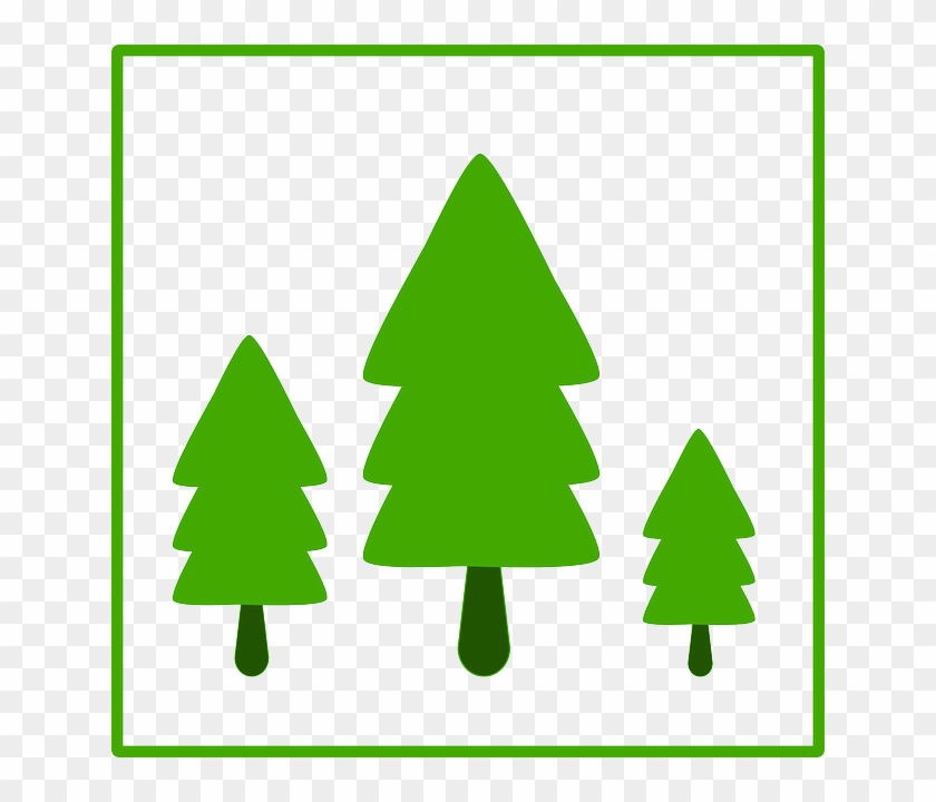 Tree, Fir, Ecology, Green, Growth, Sign - Trees Icon #33829
