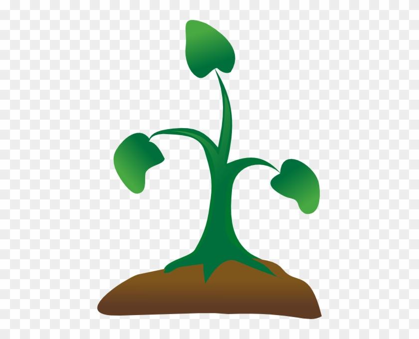 Seedling Clip Art - Sapling Clipart Png #33836