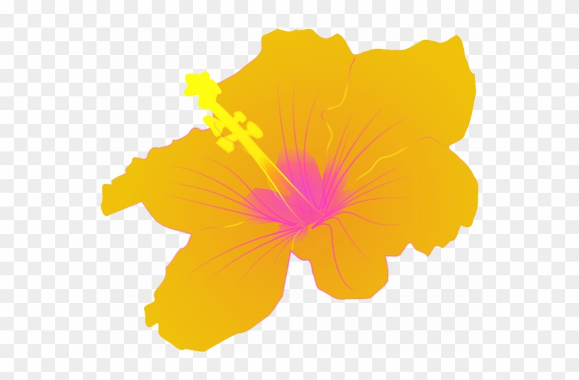 The Next Two Flowers Are Hibiscus, This One A Nice - Hibiscus Clip Art #34054
