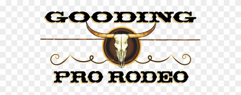 Gooding Pro Rodeo - Gooding County, Idaho #34277