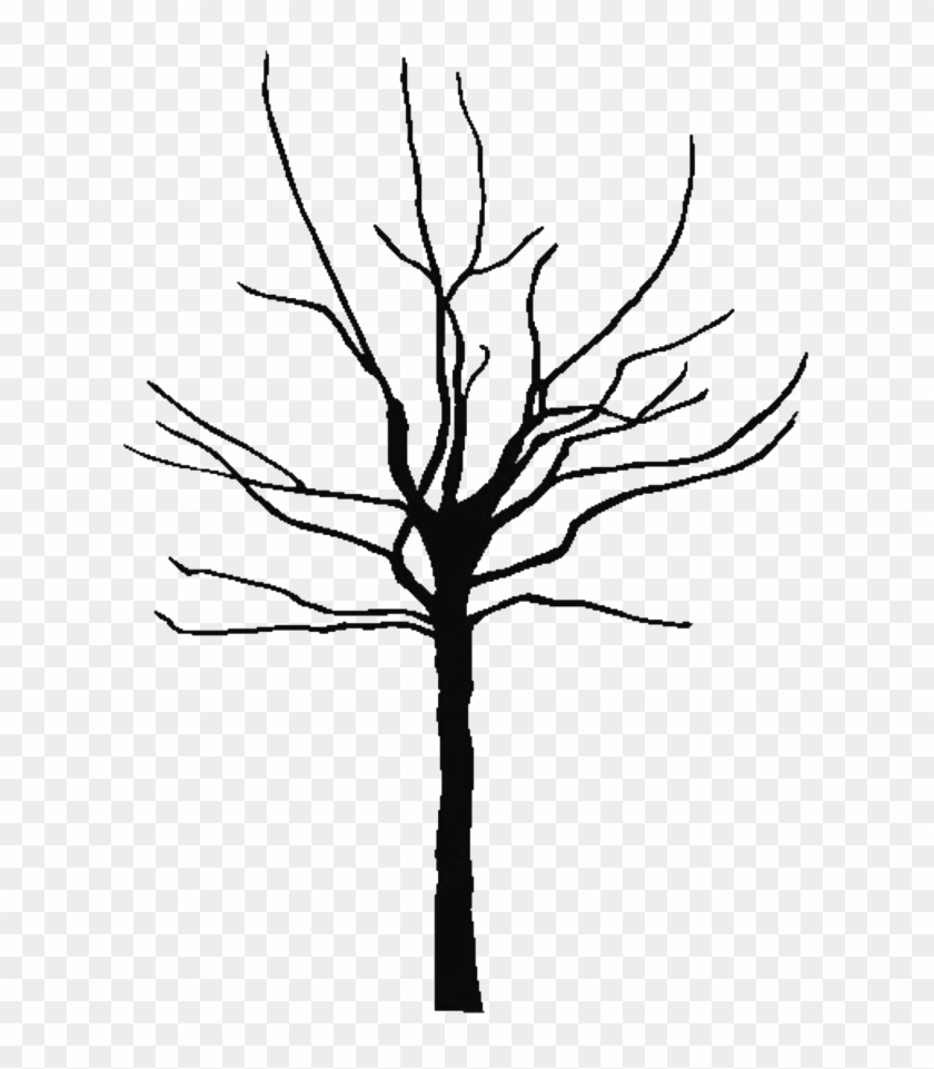 Tree Outline Printable Clipart Best 143849 Free Coloring - Bare Clipart Tree #34507