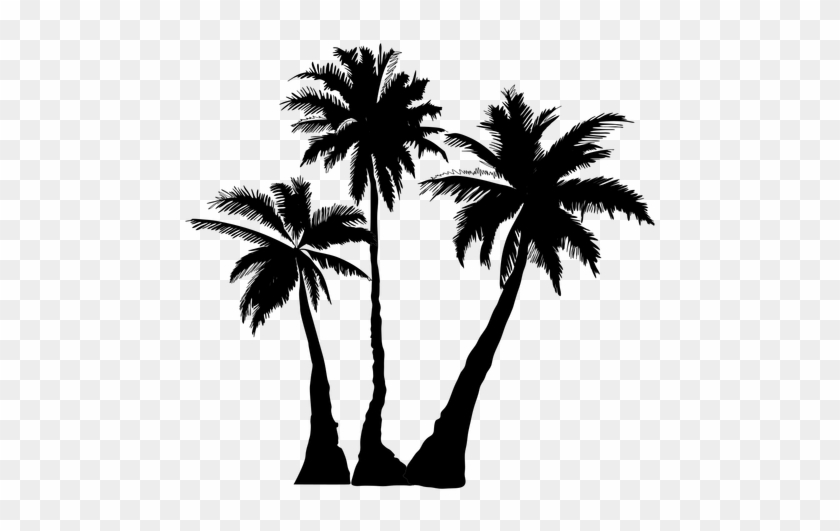 Explore Palm Tree Clip Art, Black Silhouette, And More - Palm Trees Silhouette Png #34548