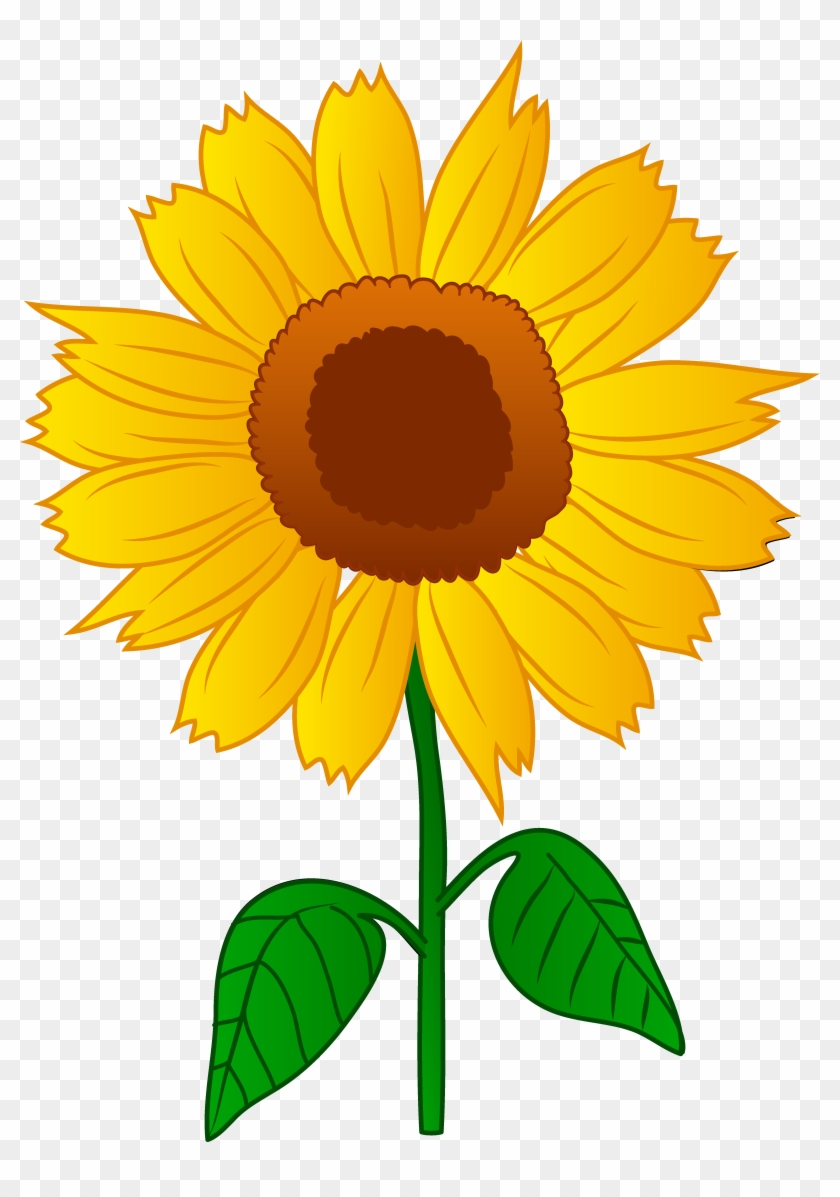 Clip Arts Related To - Clipart Sunflower #34631