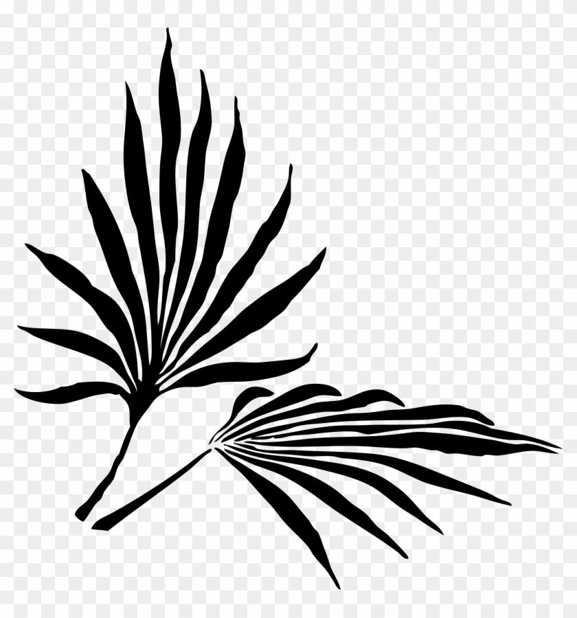 Net » Clip Art » Fronds Silhouette Black White Line - Palm Frond Clip Art #34770