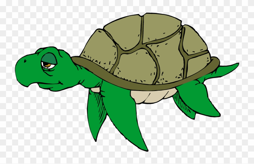Hawaiian Sea Turtle Clipart Free Images 2 - Sad Turtle Clip Art #34794