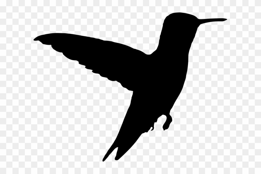 7916 Flying Bird Silhouette Clip Art Free Public Domain - Silhouette Humming Bird #34884