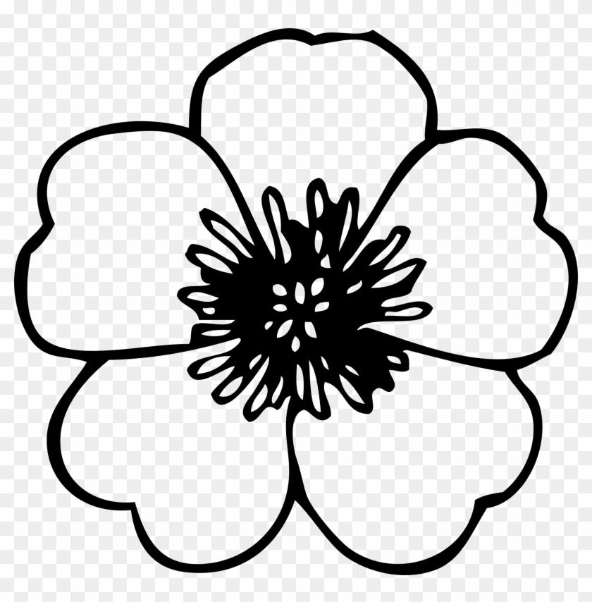 Hawaiian Flower Clip Art Black And White Flower Clipart - Flower Clip Art Free #34900