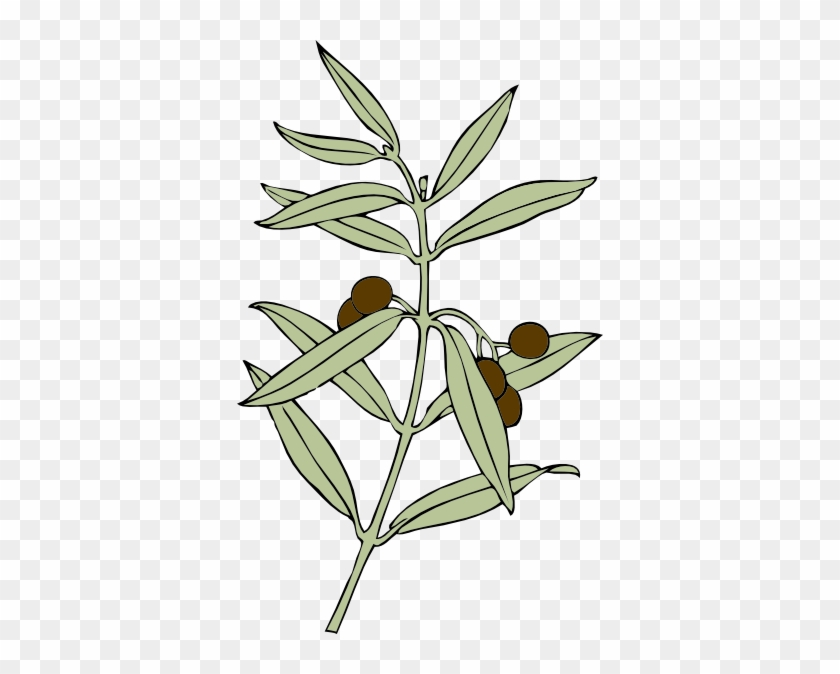 Free Vector Olive Branch Clip Art - Olive Branch Animated #34952