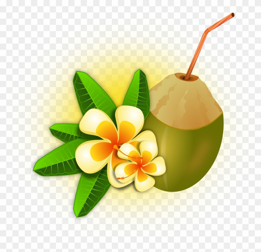 Hawaii Clipart Coconut Cocktail - Coco Tropical Png #34968