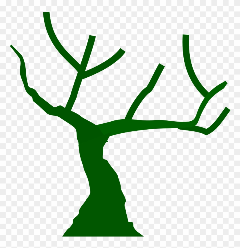 Get Notified Of Exclusive Freebies - Tree With Branches Icon #34965