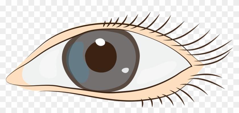 Eyes Sight Face Clip Art Graphics - Cap #34995
