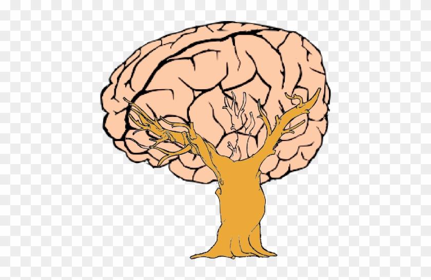 Brain Tree Clip Art - Brain Cartoon Transparent Background #35432