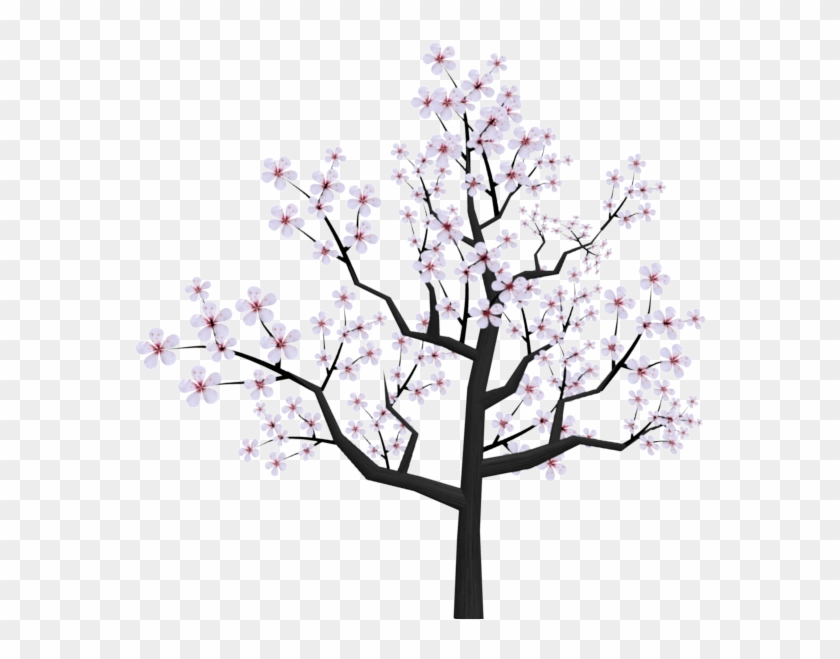 Drawn Sakura Blossom Transparent - Cherry Blossom Tree Png Drawing #35523