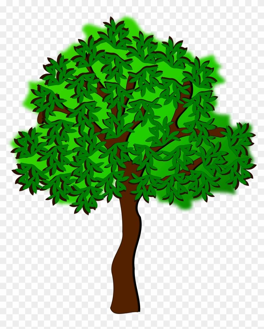 Clip Art, Flora, Nature, Plant, Tree - Summer Tree Clip Art #35586