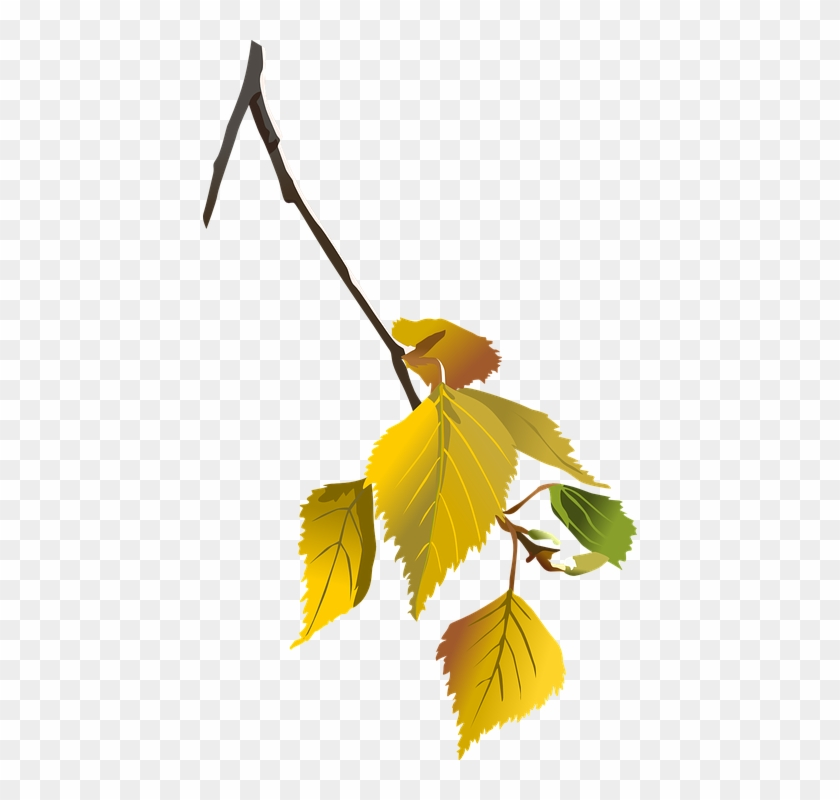 Tattoo - Autumn Leaves Tree Branch Png #35592