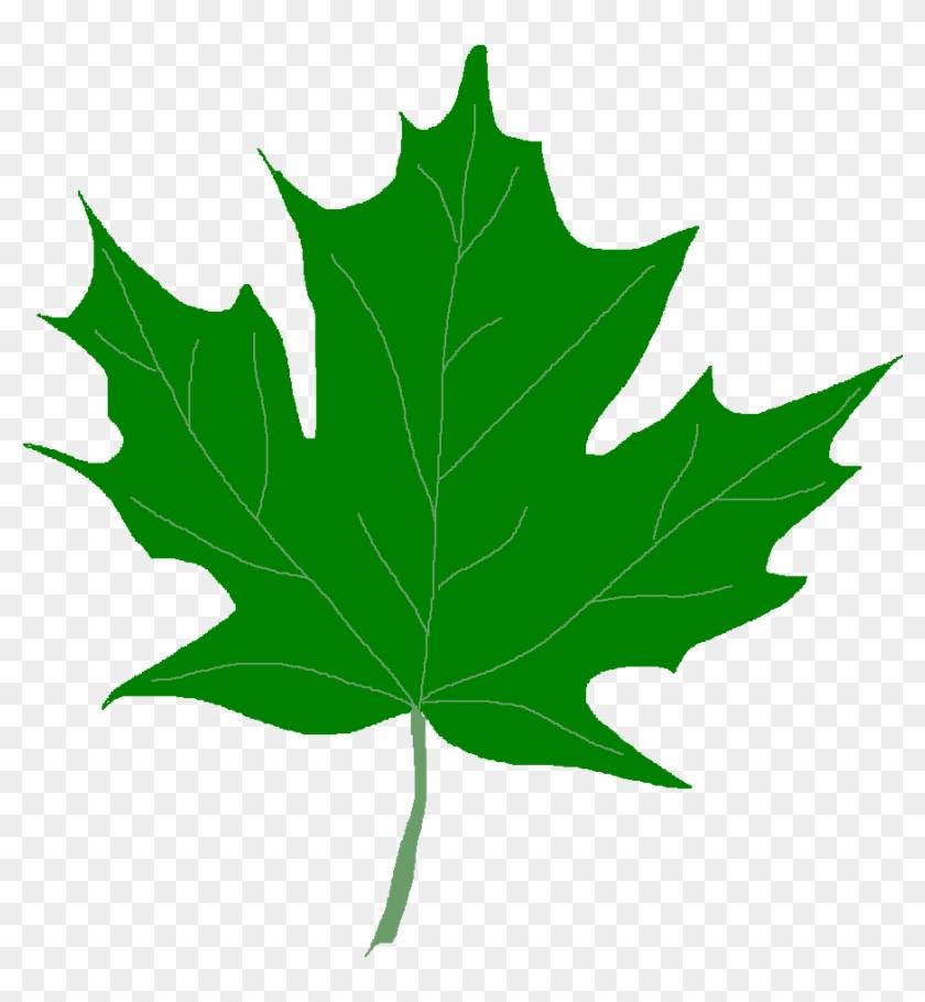 Leaves Clip Art - Green Fall Leaves Clip Art #35627