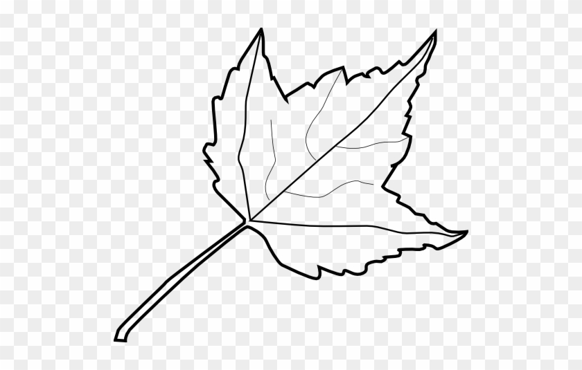 Embed This Clipart - Outline Image Of Leaf #35687