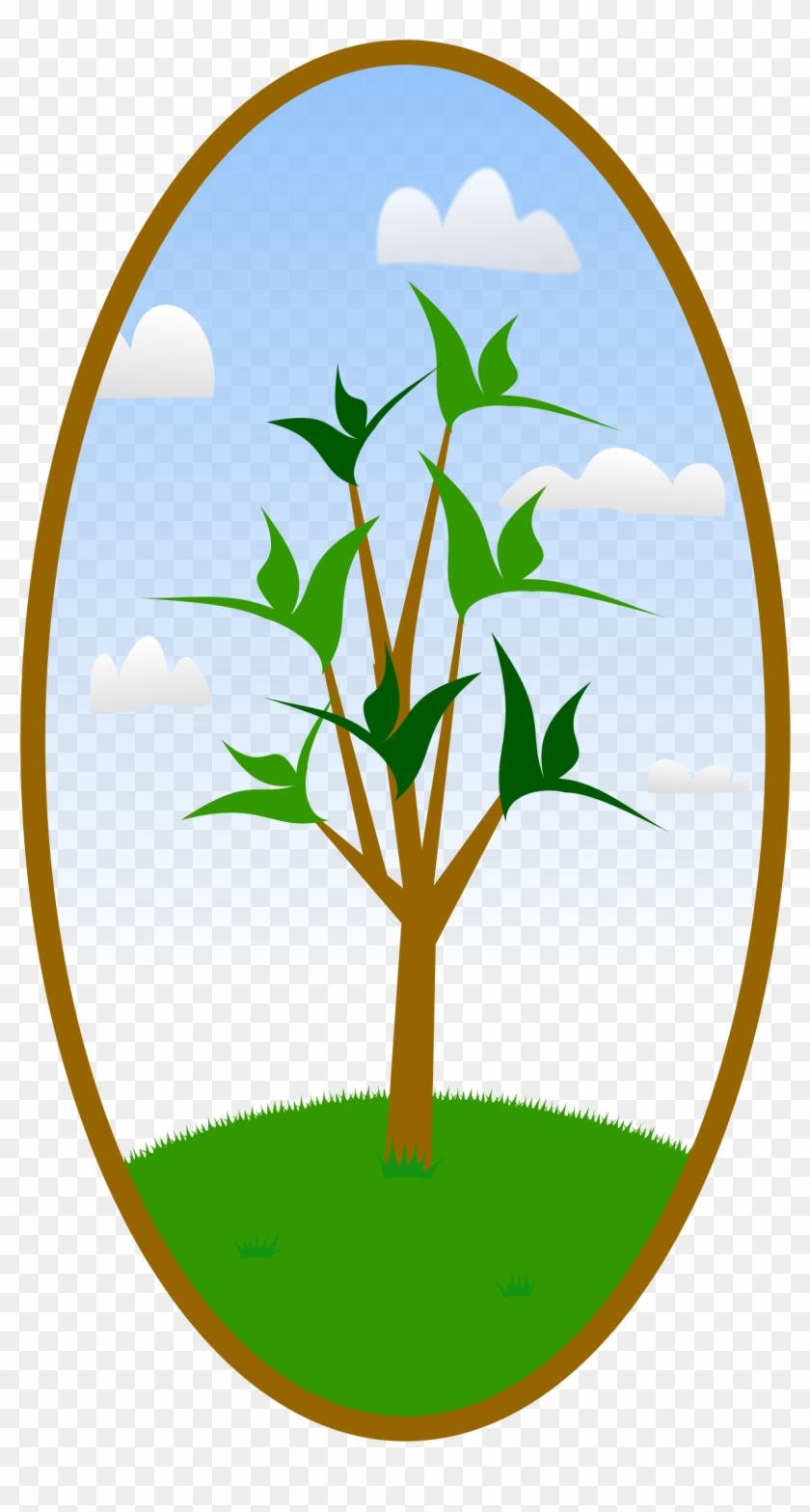 Big Image - Tree Hugger Nature Lover Tee Tile Coaster #35806