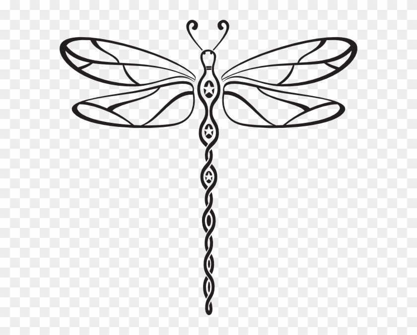 Welcome To The Website Of Susan Baldwin - Dragonfly Vector #204486
