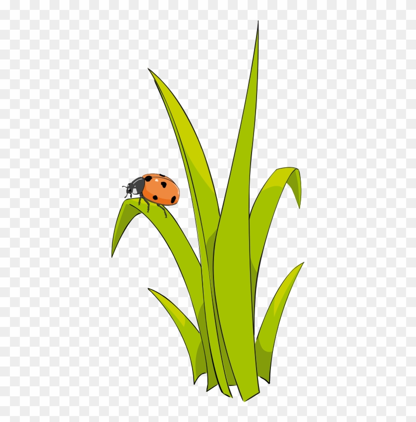 grass clip art free clipart panda free clipart images - 840×852