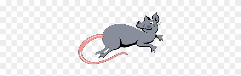 Innovative Grade Us Origin Sprague Dawley Rat Liver - Sprague Dawley Rat Png #205339