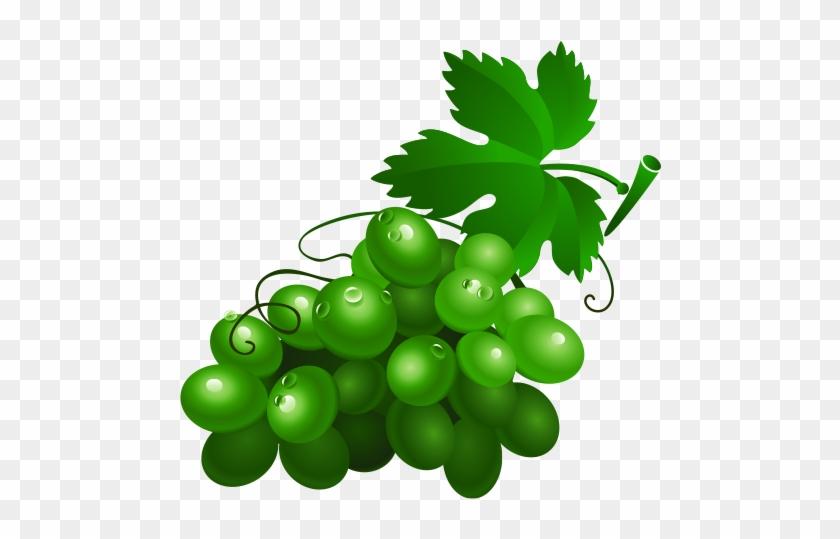 Wine Grape Drawing Fruit Clip Art - Green Grapes Cartoon #207352