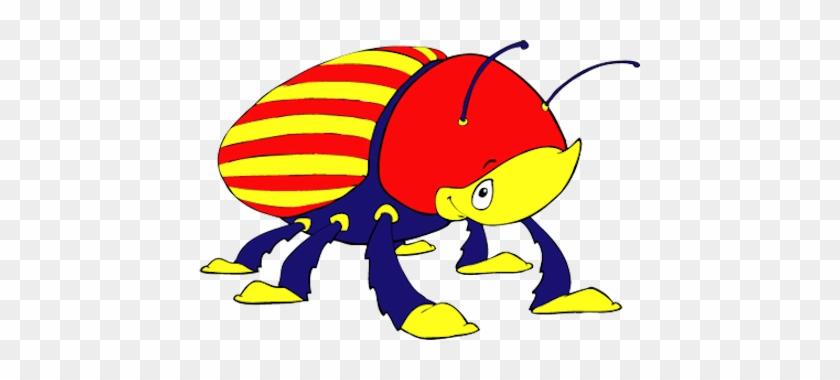 Beetles Pre K Gymnastics - Beetle #207586