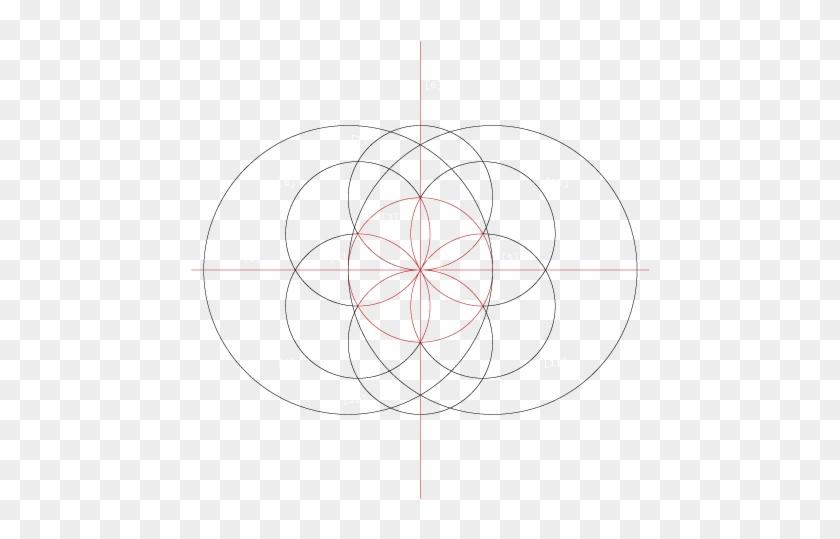 1 Draw A Straight Horizontal Line Using A Pencil Circle 1320366