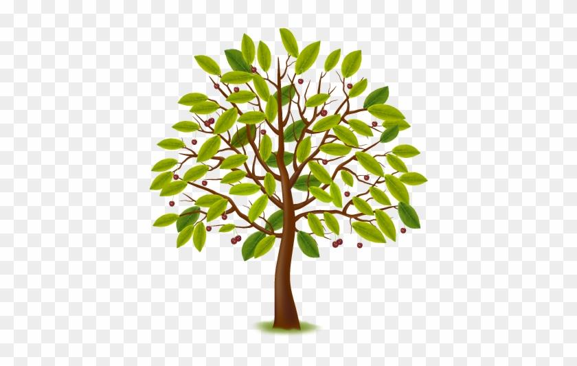 Tree Clipart Clipart Nursery Tree Arbre Estacions Free Transparent Png Clipart Images Download