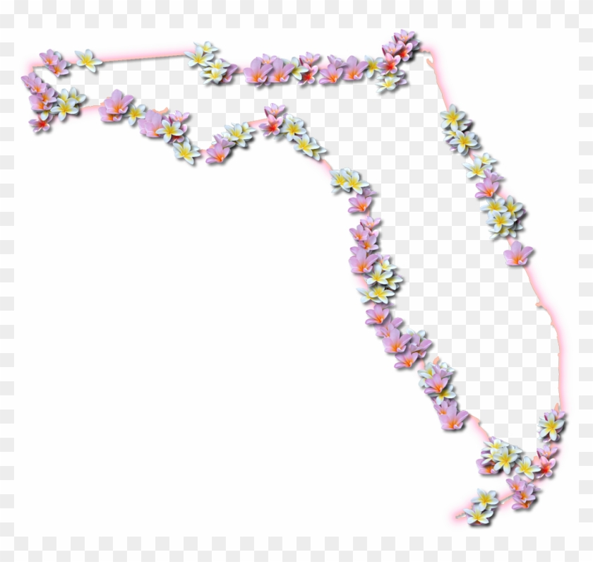 """Florida """"fancy Frame"""" Style - Spring Flowers In Florida #1322293"""