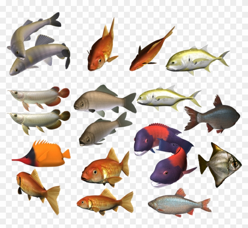 Marine Fish Clipart Colour Fish - School Of Fish Transparent #1324006