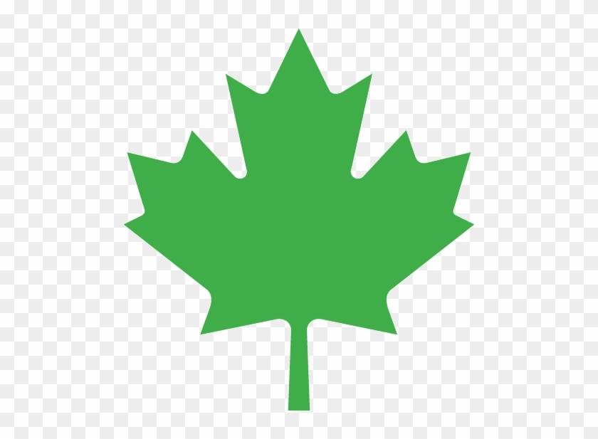 Green Maple Leaf - Leaf On The Canadian Flag #1324708