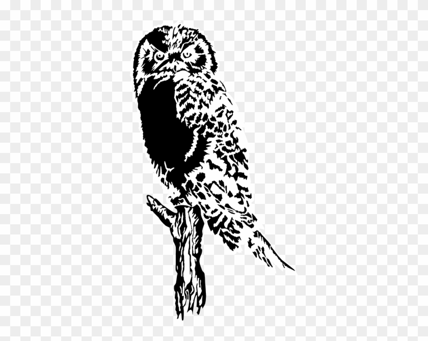 """Owls Are Not What They Seem Square Sticker 3"""" #1333630"""