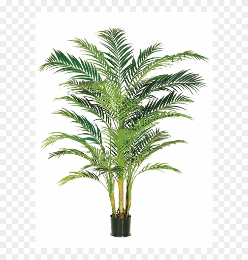 7' Areca Palm Tree X4 In Pot Green - Silk Plants Direct Areca Palm Tree - Green - Pack Of #1334775