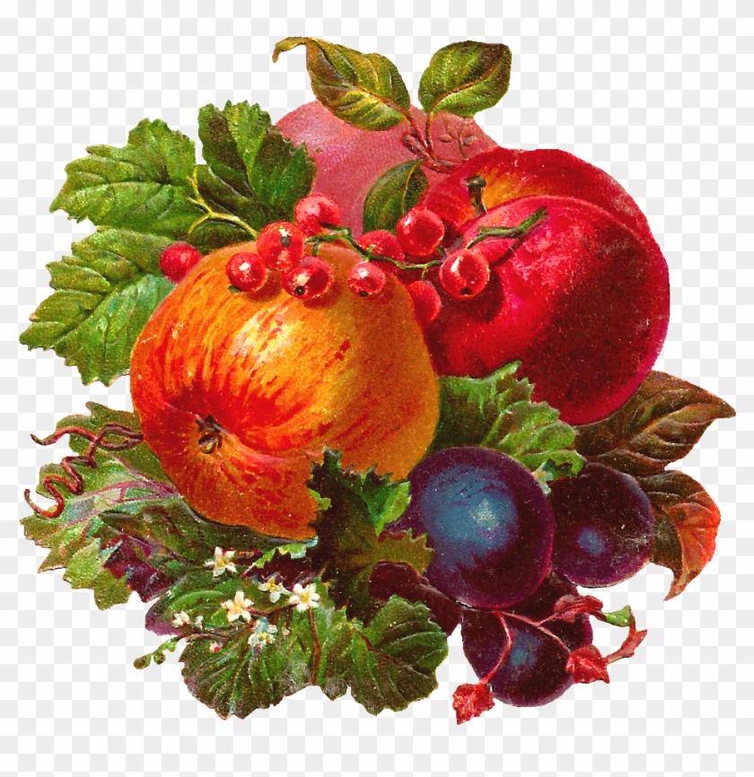 картинки овощей и фруктов для декупажа территория издавна была