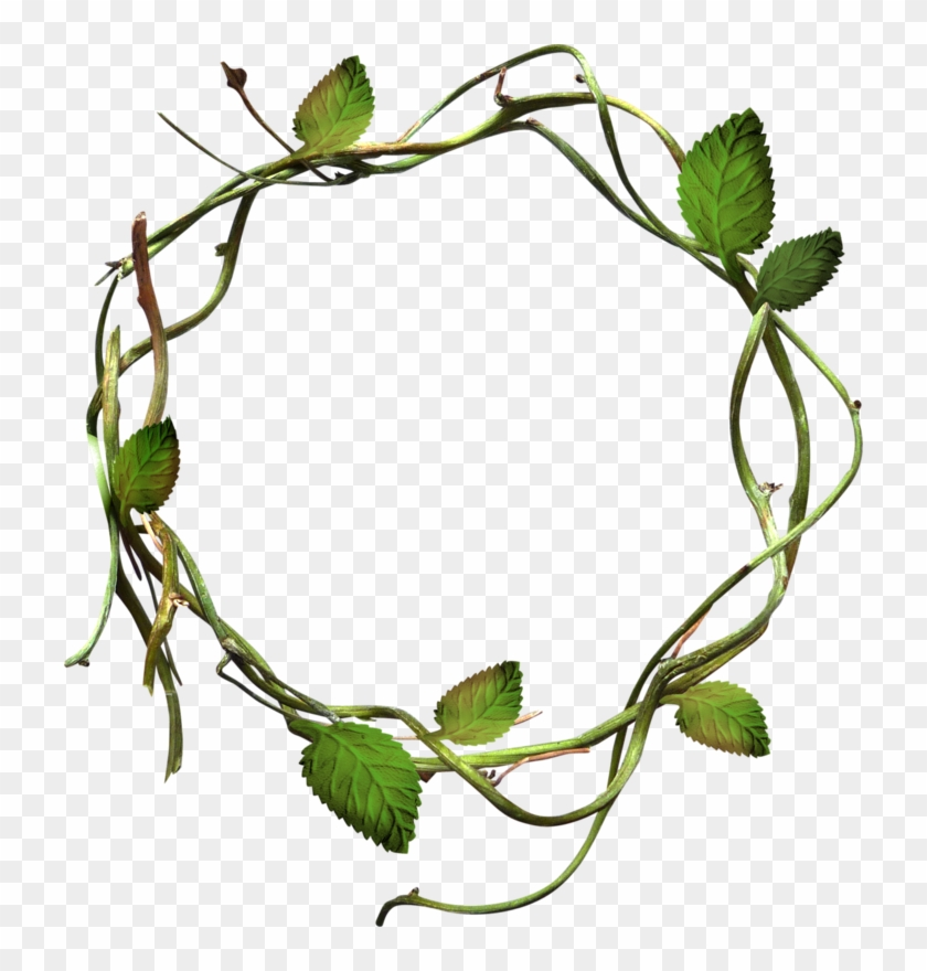 Green Leaves Grass Circle - Vines In A Circle #1335377
