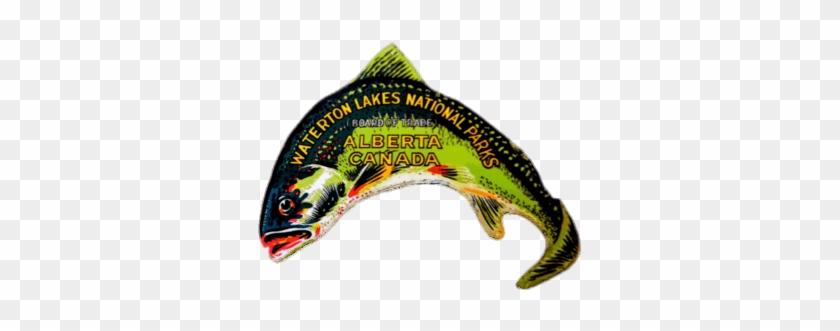 Waterton Lakes National Park Fish Sticker Png - Waterton Lakes National Park #1337894