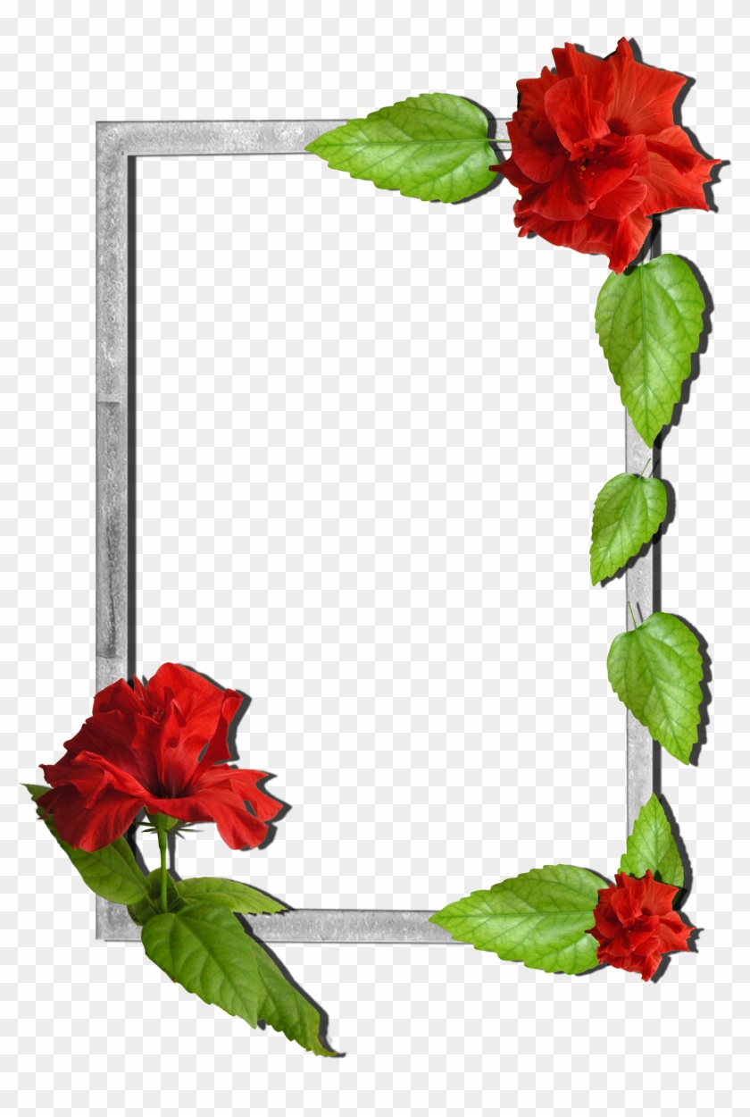 Flowers Frame - Frames Images With Flowers - Free Transparent PNG ...