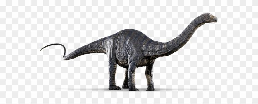 The Dinosaurs Of & - Dinosaurs Jurassic World #1341598